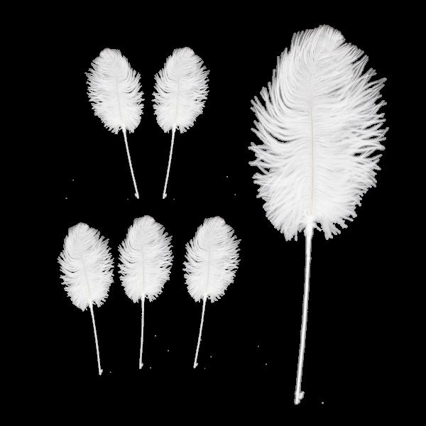 24 x Weiße Straussen Federn